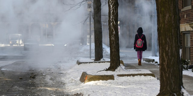 A women walks down a steamy sidewalk in Detroit's New Center Wednesday, Jan. 30, 2019 as low temperatures dip below freezing.