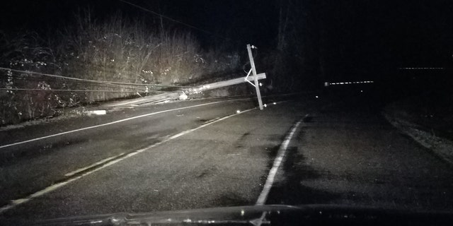 The storm toppled trees and powerlines throughout Western Washington.