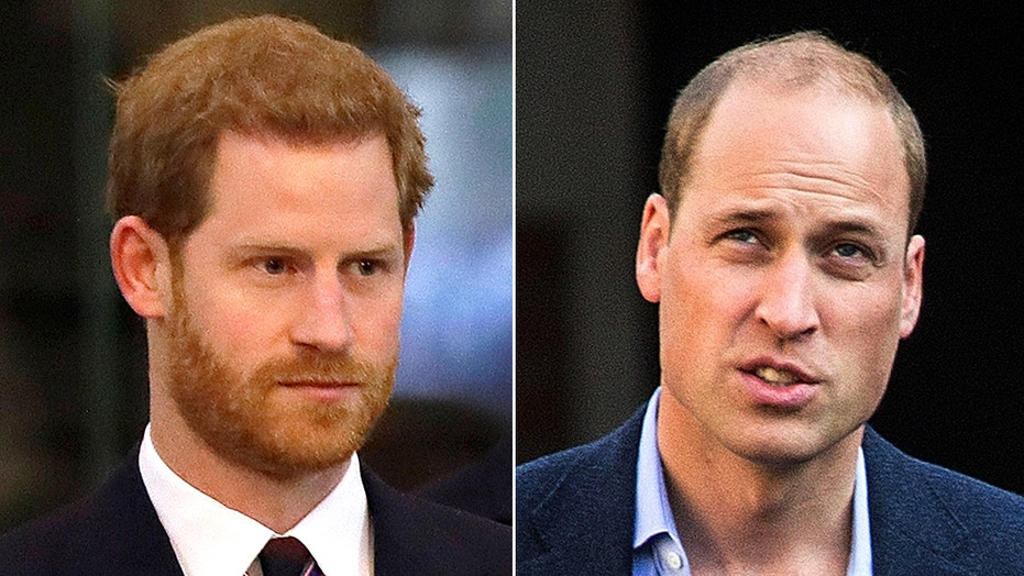Prince William told Prince Harry he's 'putting fame over family' after Oprah interview, source claims