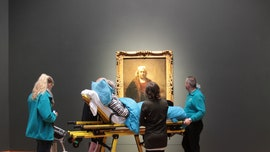 Rare Rembrandt exhibit can be terminally ill patients' final stop thanks to charity