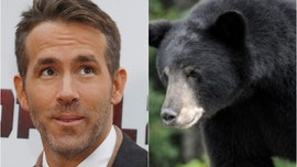Ryan Reynolds recalls scary bear encounter during camping trip: 'We screamed bloody murder'