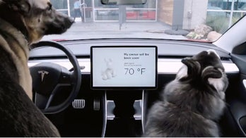 Tesla's latest features are for criminals and dogs