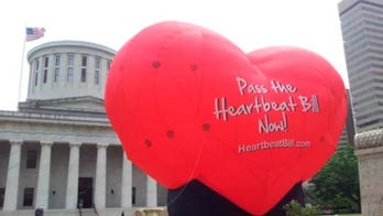 Ohio reintroduces 'heartbeat' abortion bill as new governor vows to sign it into law