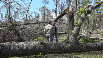 Months after Hurricane Michael, farmers still trying to recover from billions in crop damage