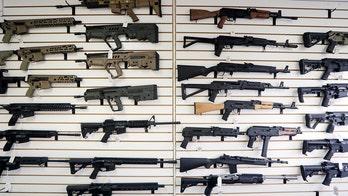 House passes bill expanding background checks for gun sales