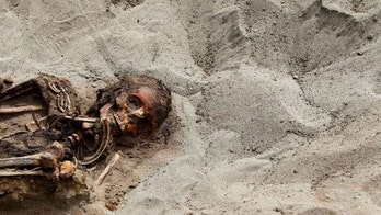 How Iron Age Celts embalmed severed heads