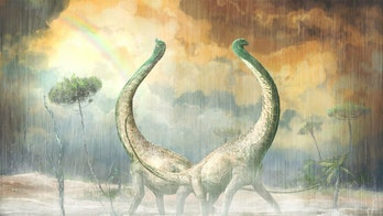 School-bus sized dinosaur had a 'heart-shaped tail'