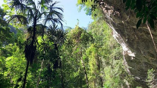 5 Belize activities for the ultimate adventurer