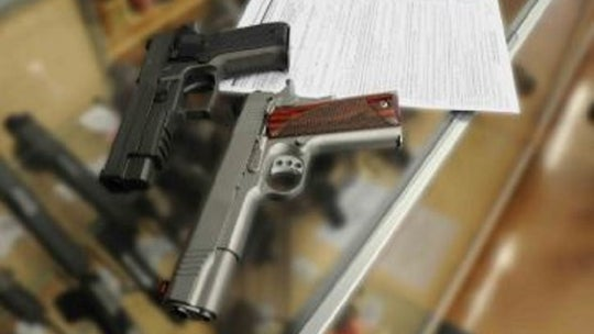 German man not fit for firearms license after being shot by own dog: court