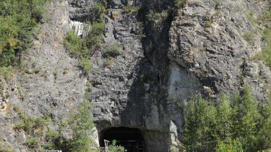 Extinct human species lived together in Siberian cave, new research shows