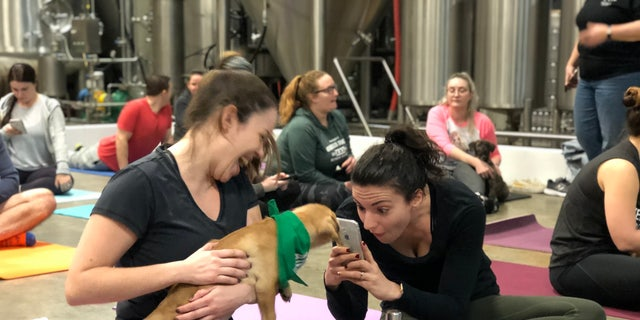 A participant takes a photo with Scout the puppy. (JULIAN BROWN)