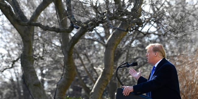 President Donald Trump speaks during an event in the Rose Garden at the White House in Washington, Friday, Feb. 15, 2019, to declare a national emergency in order to build a wall along the southern border. (AP Photo/Susan Walsh)