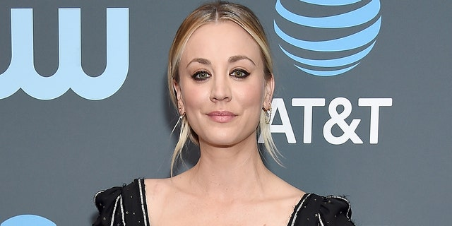 Kaley Cuoco shared some behind-the-scenes images from the making of her Harley Quinn animated TV show.