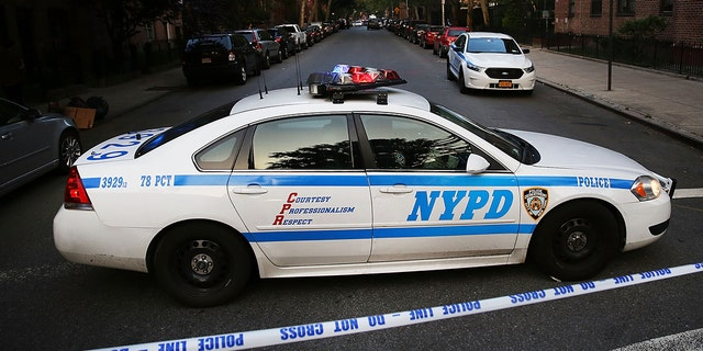"""A select few precincts, specifically in Brooklyn, are said to be where a majority of the shootings and homicides have taken place this year. Through """"precision deployment,"""" additional officers will be sent to patrol the34th, 43rd, 79th, and 113th precincts, in the Bronx, the Bed-Stuy neighborhood of Brooklyn, and Jamaica, Queens, respectively"""