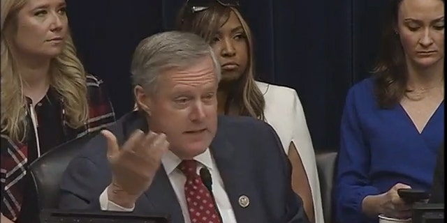 Lynne Patton sitting behind Rep. Mark Meadows at the Michael Cohen hearing.