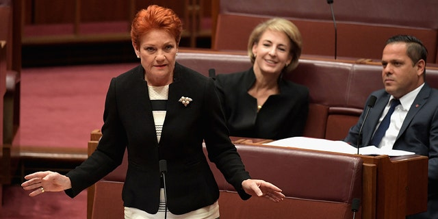 Senator Pauline Hanson, pictured in parliament in November, appears to have started the chain of events by using parliamentary privilege to accuse an unnamed senator of sexually harassing at least six staffers.