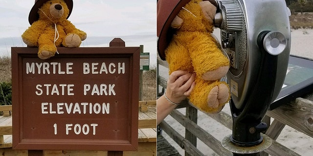 Before returning the bear, park rangers took it on a little adventure around the park.
