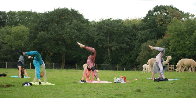Each session is led by qualified instructor Sian Bartlett, and light refreshments are provided after each class.