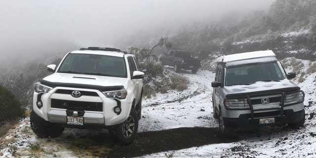 This Sunday, Feb. 10, 2019, photo shows snow on the ground in Polipoli Spring State Recreation Area in Kula, Hawaii on the island of Maui.