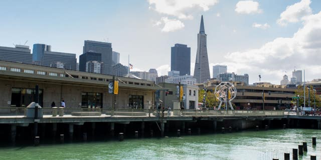 A suitcase stuffed with a man's body was found floating in the San Francisco Bay earlier this month.