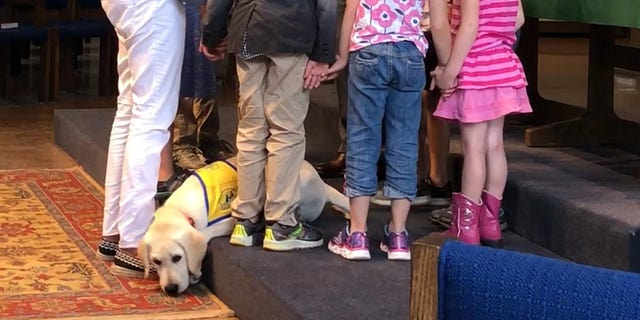 """Pastor Richard Young and the children at Orchard Park Presbyterian Church outside of Buffalo, New York pray for Spike, a service dog in training. Jennifer Williams, the executive producer for """"The Daily Briefing with Dana Perino,"""" said the trip with Spike was one of the most meaningful to her."""