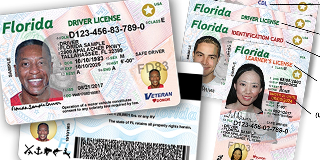 Florida Illegal Allow Would Licenses Immigrants Get Fox Driver's To News Bill