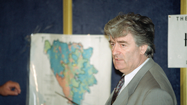The Latest: Hearing underway for Karadzic appeals decisions