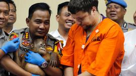 Indonesia says arrested Russian smuggled orangutan, lizards