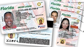 Florida bill would allow illegal immigrants to get driver's licenses
