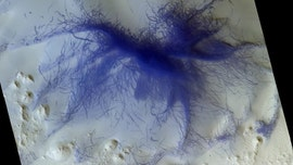 Space orbiter spots 'hairy blue spider' on Mars