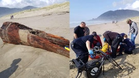 Woman crushed by large log on Oregon beach that was struck by 'sneaker wave'