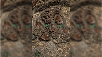 Fossil suggests earliest known movement of humans out of Africa