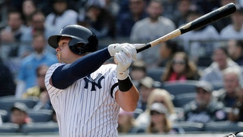 SEE IT: Wild photo of Yankees slugger Luke Voit getting plunked by pitch stuns Internet