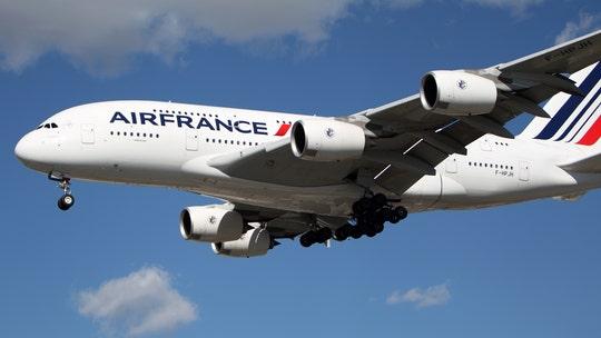 Passenger's dog found dead following Air France-KLM flight