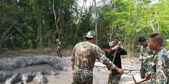 In this photo taken and released by the Department of Natural Park, Wildlife, and Plant Conservation Thursday, March 28, 2019, Thap Lan National Park rangers prepare to extract six baby elephants stuck in a muddy pond at Thap Lan National Park, Nakhon Ratchasima province, northeastern Thailand. Park rangers took five hours to dig out a path to save six elephant calves after they were found trapped in a muddy pond.