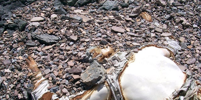 Photo-The George Mallory body found on Mount Everest in May 1999.