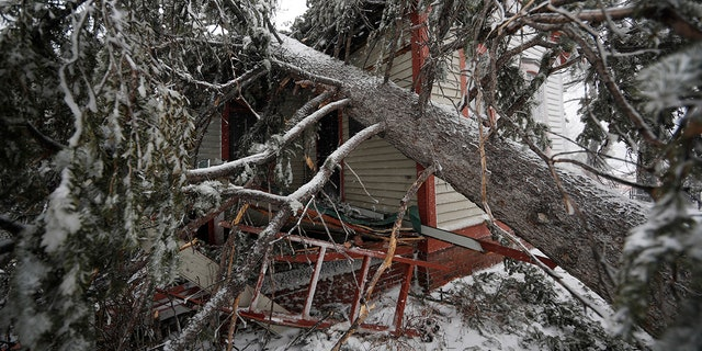 A tree lays on top of the Eugene Field house in Washington Park as a late winter storm packing hurricane-force winds and snow sweeps over the intermountain West Wednesday, March 13, 2019, in Denver. (AP Photo/David Zalubowski)