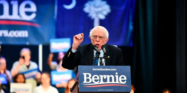 Vermont Sen. Bernie Sanders addressing a rally in North Charleston, S.C., in March. (AP Photo/Meg Kinnard, File)