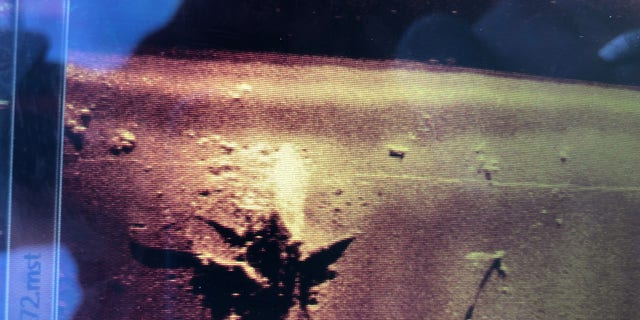 A sonar image shows the B-24 wreckage on the seabed. (Credit: Dr. Art Trembanis, University of Delaware)