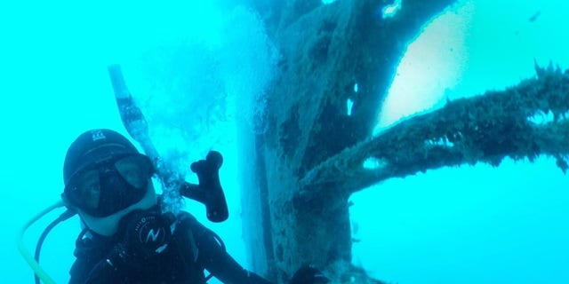 A diver examines part of the B-24 wreckage.