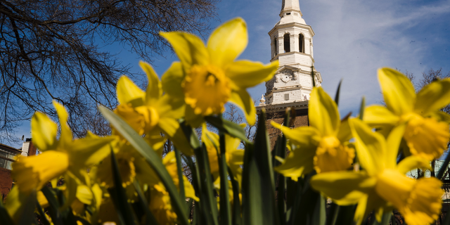 In this Wednesday, March 27, 2019 photo, the tower and steeple of Christ Church stands above newly bloomed daffodils in Philadelphia. The National Endowment for the Humanities has awarded a $500,000 grant to the historic church to restore its steeple and church tower. (AP Photo/Matt Rourke)