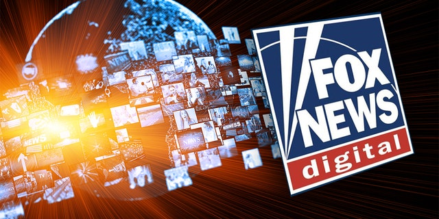 Westlake Legal Group Fox-News-Digital Fox News Digital posts best quarter ever, beats CNN in key metrics fox-news/entertainment/media fox news fnc/entertainment fnc Brian Flood article 86afefb8-018d-50eb-80a2-d16d85ca0fc8