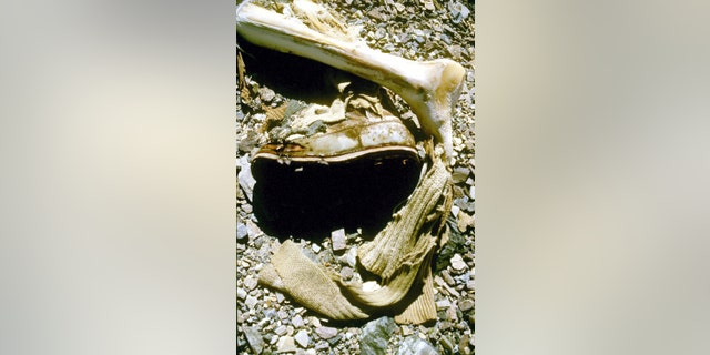 The remains of British mountaineer George Mallory, which were covered with rocks following their discovery in 1999.