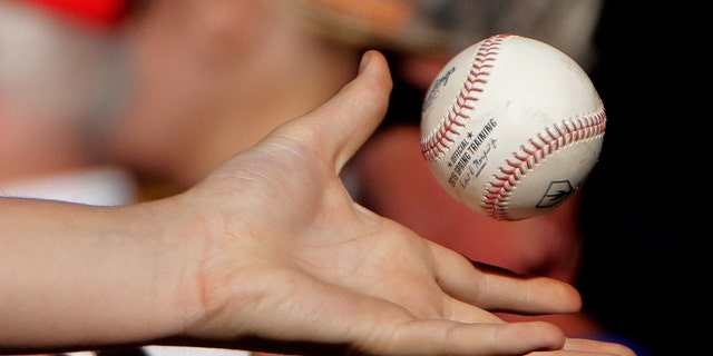 A fan catches a ball thrown into the stands during the fifth inning of a spring training baseball game. (AP Photo/Charlie Riedel)
