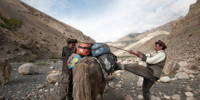 Afghanistan residents are seen packing a yak at the Wakhan Corridor.