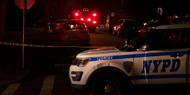 New York Police Department and New York City Fire Department units respond to a report of shots fired Wednesday in the Todt Hill section of the Staten Island borough of New York. (Joseph Ostapiuk/Staten Island Advance via AP)