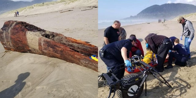 A woman was seriously injured in Oregon after she was on a log that was struck by a sneaker wave on Saturday.