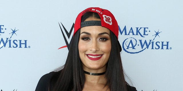 """Nikki Bella unknowingly became the center of a """"political debate"""" after she promoted The Rock's book after he endorsed Joe Biden."""