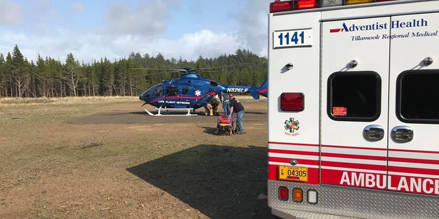 """The woman who was """"crushed"""" by the log was later flown to a Portland hospital after sustaining serious injuries."""
