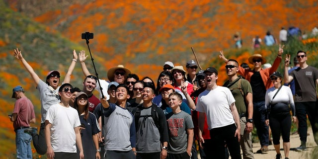 People pose for a picture among wildflowers in bloom Monday, March 18, 2019, in Lake Elsinore, Calif.